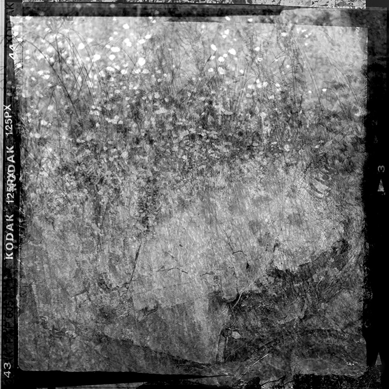 http://combesrenaud.com/files/gimgs/124_les-surfaces-du-monde-k4.jpg