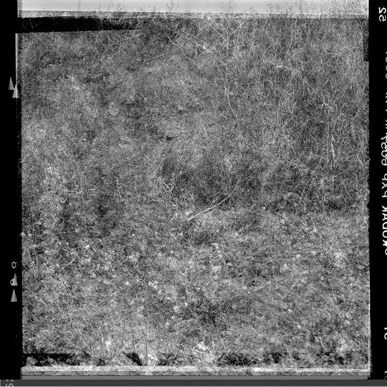 http://combesrenaud.com/files/gimgs/124_les-surfaces-du-monde-o2.jpg